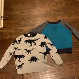 Adorable dinosaur sweater and sweatshirt.